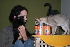 cats_mueller